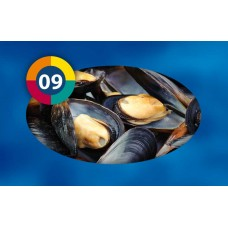 Mussels (Whole) - 1kg tablet