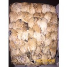 French Small Quail - 8 kg box (+/-35 quail)
