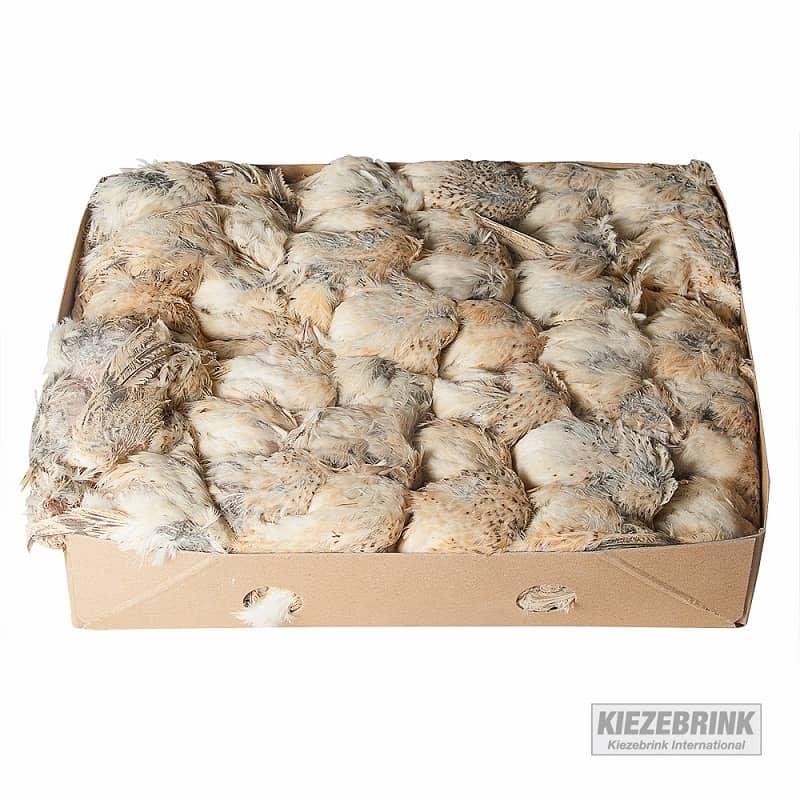 French quail box